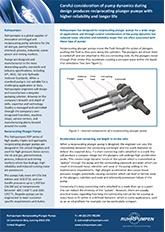 RDP Technical Paper - Pump Dynamics