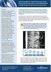 RDP Technical Paper - NPSH