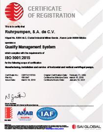 RP Mexico (RPSA) - ISO 9001:2015 certificate - EN