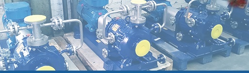 Ruhrpumpen Magnetic Drive Pumps